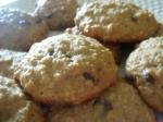 choco&oatscookie